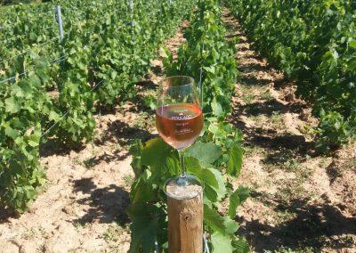 verre rosé Beaujolais Poulard